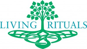 Living Rituals wedding officiation in Asheville NC